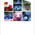 Postkarte Hofcafé Augenblicke