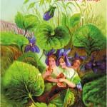 Postkarte Hofcafé Frühjahrsmarkt 2006