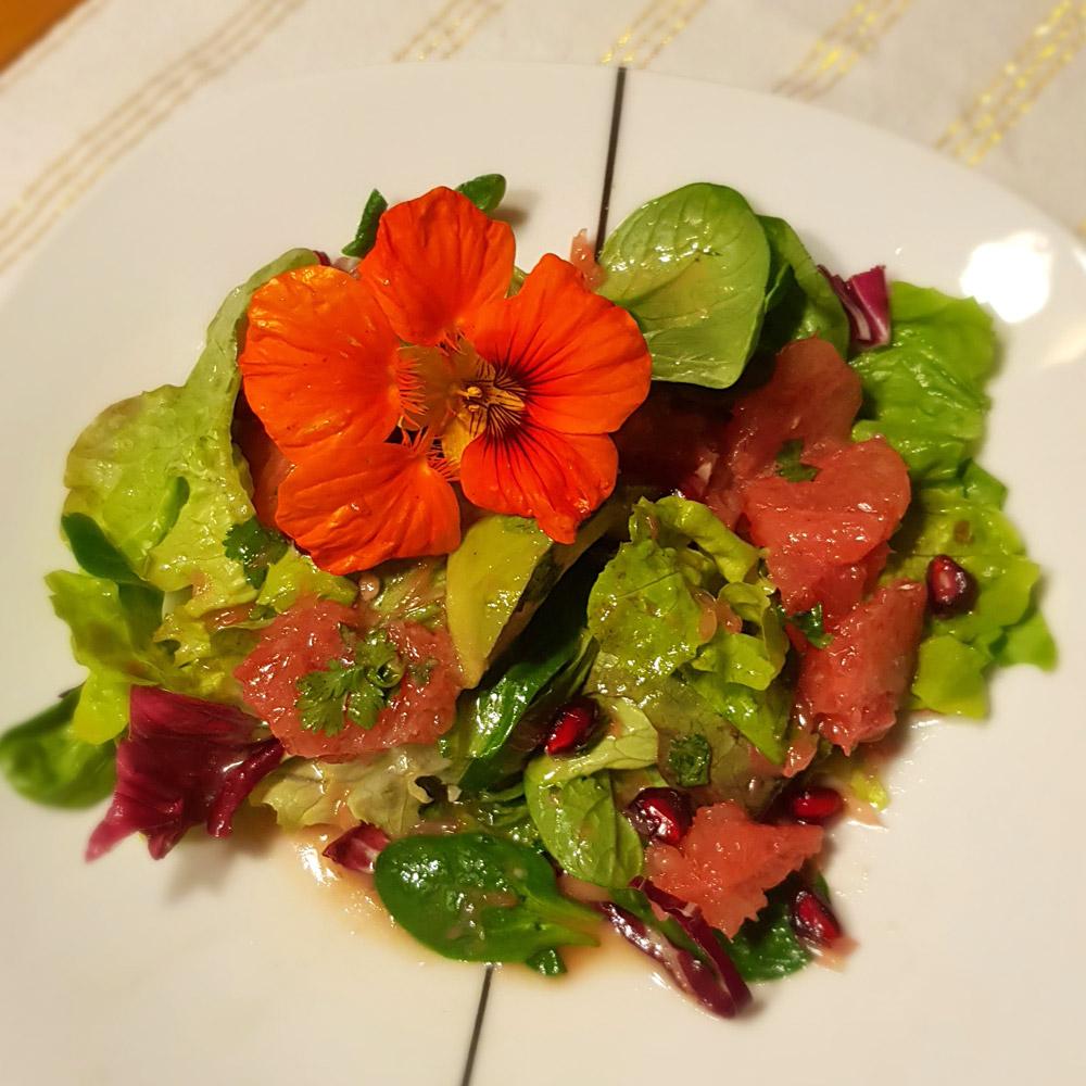 Bunter Salat mit Blutorange, Avocado und Granatapfel